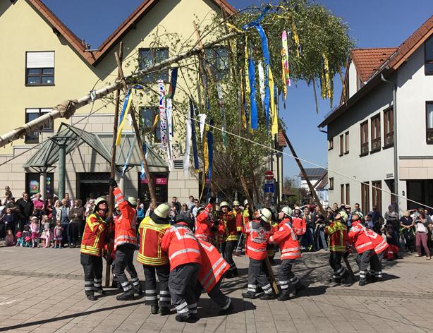 Vereine & organisationen (ZHP)